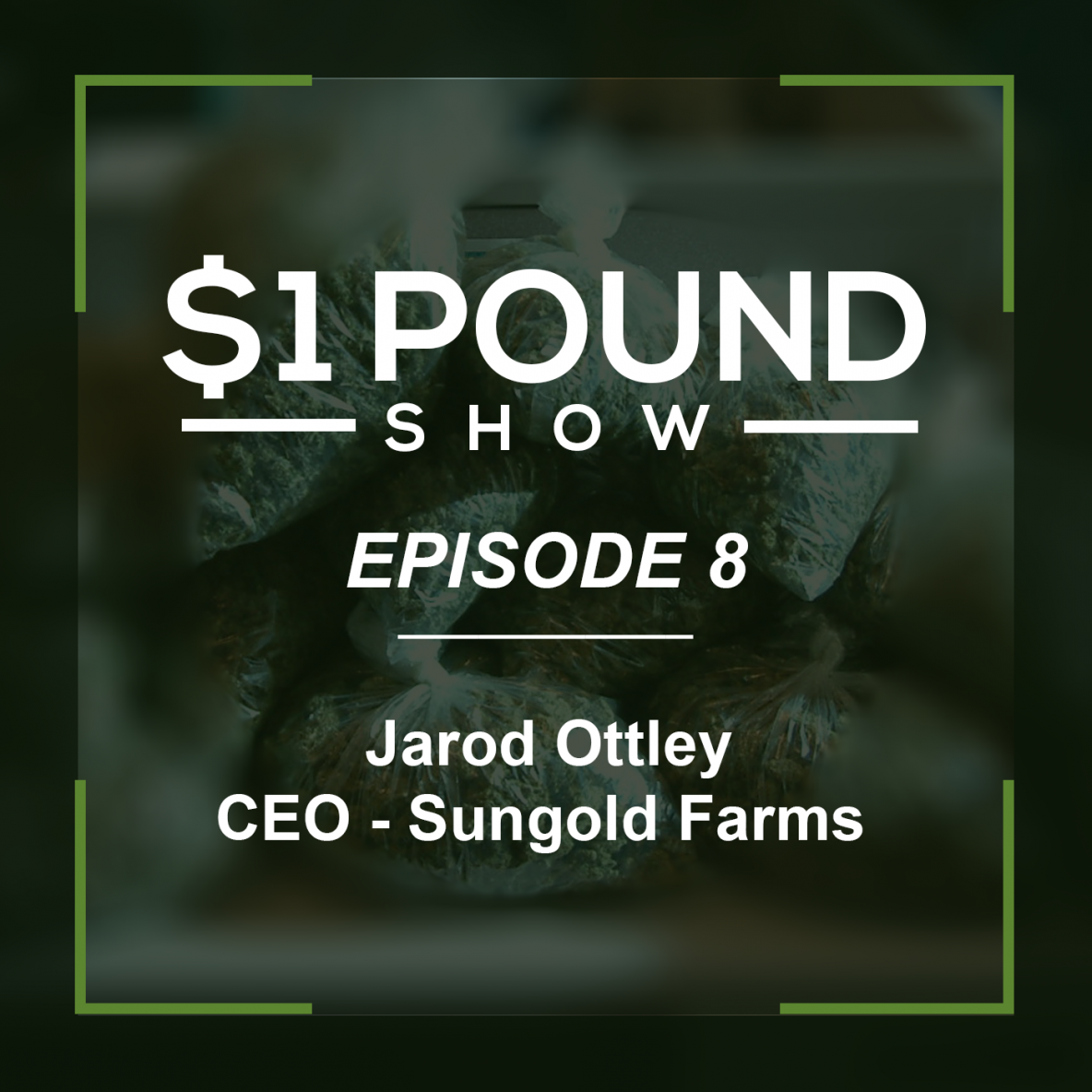 1 Pound Show episode 8